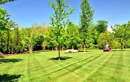 Landscape Design Services for Homes and Businesses near me Allouez Wisconsin